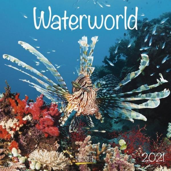 Waterworld 2021.