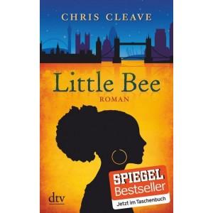 Little Bee. Roman